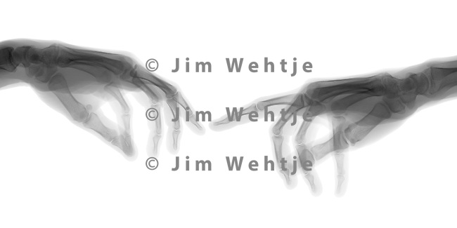X-ray image of the Creation of Adam (black on white) by Jim Wehtje, specialist in x-ray art and design images.
