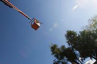 Querétaro, Qro. 15 enero 2014.- Trabajadores del municipio de Querétaro, realizan poda de árboles en la calle de Artes, en el tradicional Barrio de San Francisquito. Para llegar a las alturas, utilizan una grúa de canastacon la que además de llegar a la copa del árbol, logran evitar los cables de alta tensión.  <br /> <br /> <br /> Foto: Demian Chávez / Obtura Press Agency.