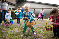 """NWA Democrat-Gazette/CHARLIE KAIJO Ezra Luka, 3, of Bentonville (center) collects eggs , Sunday, March 25, 2018 at Cooper Elementary in Bella Vista. <br /><br />Northwest Community Church hosted a Palm Sunday egg hunt at Cooper Elementary where they also hold Sunday worship.<br /><br />""""We are using this as an opportunity to reach out and serve the community,"""" said <br />Family and Missions Pastor Scott Sanders. """"A lot of people are doing Easter egg hunts next week and we wanted to do something a little different.""""<br /><br />""""We're not a church with an actual building. We want people to know we exist. We have that as a purpose and we also just want to serve the community,"""" he added."""