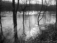 100 Year Flood of the Big Piney River at Old US Route 66 near Devils Elbow, MO on 19 March 2008. B&W Conversion.