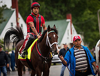 LOUISVILLE, KY - MAY 04: Classic Empire with Matin Rivera walks to the track at Churchill Downs on May 04, 2017 in Louisville, Kentucky. (Photo by Alex Evers/Eclipse Sportswire/Getty Images)