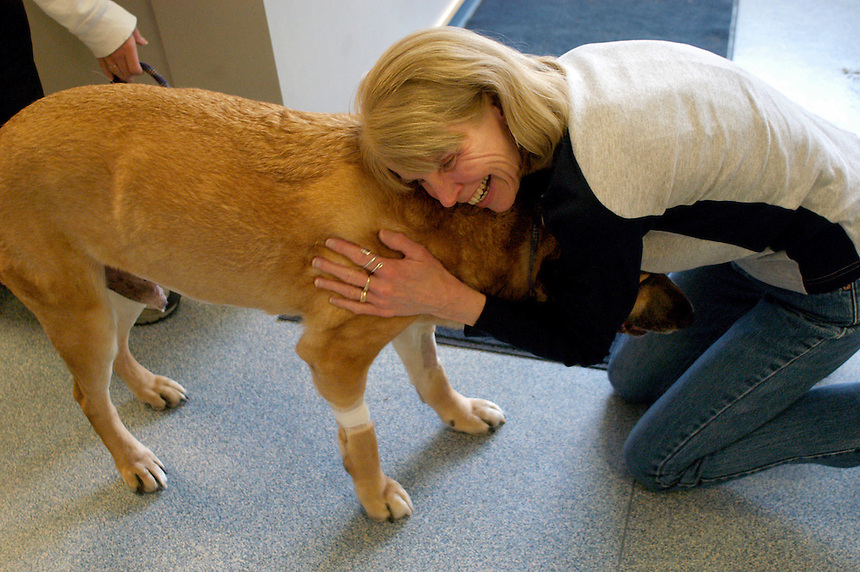 "Cindy McCarthy of Woodstock, VT embraces her dog, Zimmerman, after he had surgery to correct a twisted stomach, a condition that can be fatal if left untreated. McCarthy and her husband, Tim McCarthy (not pictured), were ready to bring Zimmerman home. ""It's a happy day,"" Tim McCarthy said. The clinic serves clients from New Hampshire as well as Vermont, Massachusetts and Maine...CAVES Day 11.May 1, 2005.(Concord Monitor photo/Danny Gawlowski)."