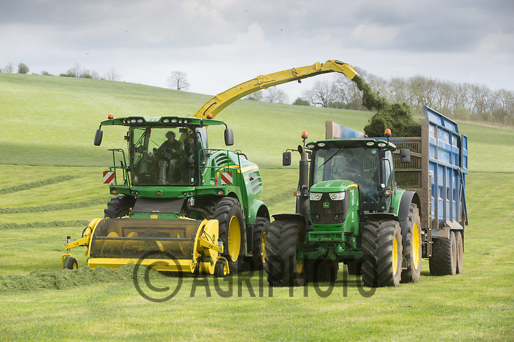 Contractors take a first cut of silage on the 10th of April at Will Armitage's Keythorpe Lakes Farm,Tugby,Leicestershire <br /> Picture Tim Scrivener 07850 303986<br /> &hellip;.covering agriculture in the UK&hellip;.