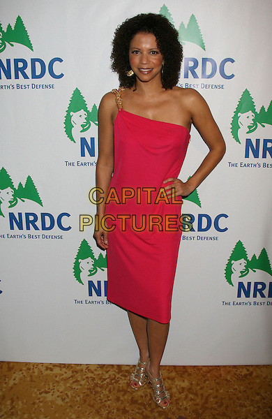 GLORIA REUBEN.Natural Resources Defense Council's 20th Anniversary Celebration held At The Beverly Wilshire Hotel, Beverly Hills, CA, USA..April 25th, 2009.full length pink red one shoulder dress hand on hip .CAP/ADM/MJ.©Michael Jade/AdMedia/Capital Pictures.