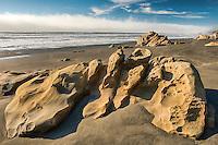Beach, Olympic National Park, Washington