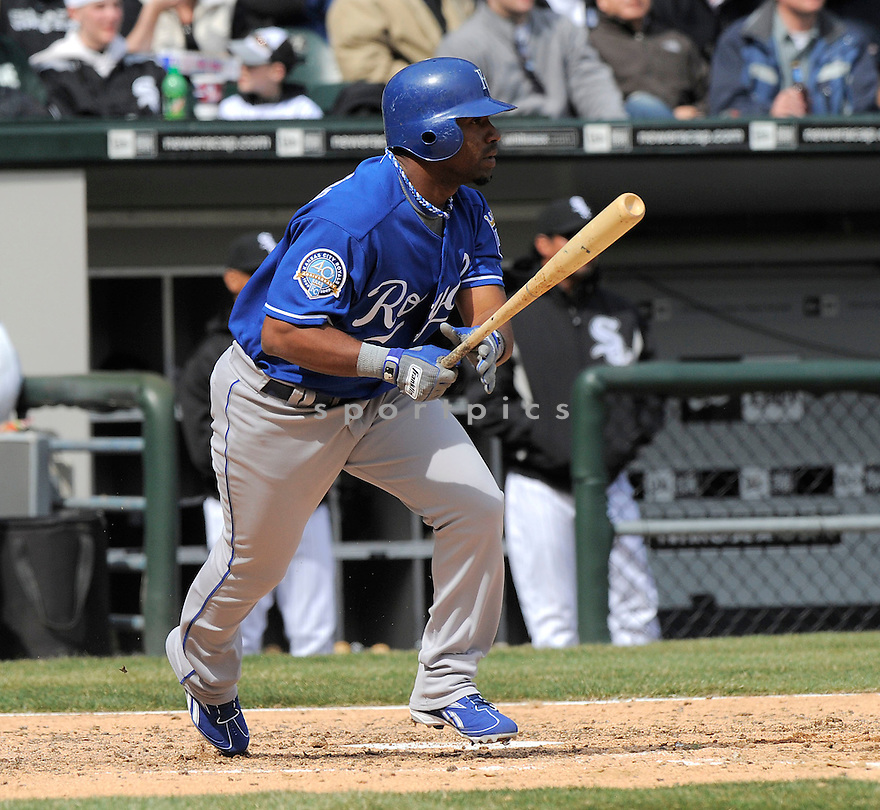 ALBERTO CALLASPO, of the Kansas CIty Royals, in action  during the Royals  game against the Chicago White Sox  on April 8, 2009 in Chicago, IL.  The Royals  beat  the White Sox  2-0 in Chicago,