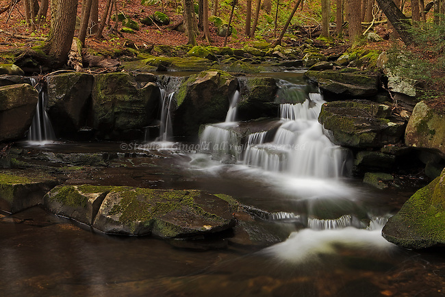 A small waterfall found along Atherton Brook within Gate 15 at the Quabbin Watershed in Shutesbury, Massachusetts.