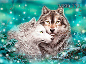 Kayomi, REALISTIC ANIMALS, paintings, wulf, WinterDuet_M, USKH171,#A# realistische Tiere, realista, illustrations, pinturas