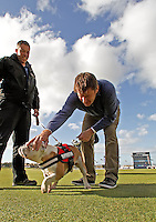 01  OCT 14 Nick Faldo and friend SuperStar at The Alfred Dunhill Links Championship at The Old Course in St. Andrews, Scotland. (photo credit : kenneth e. dennis/kendennisphoto.com)