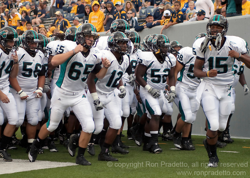 September 4, 2010: Coastal Carolina team leaves the field after warm up. The West Virginia Mountaineers defeated the Coastal Carolina Chanticleers 31-0 on September 4, 2010 at Mountaineer Field, Morgantown, West Virginia.