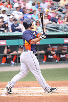 Houston Astros first baseman Brett Wallace (29) at bat against the Miami Marlins during a spring training game at the Roger Dean Complex in Jupiter, Florida on March 12, 2013. Houston defeated Miami 9-4. (Stacy Jo Grant/Four Seam Images)........