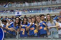 BELO HORIZONTE, MG, 01.12.2013 &ndash; CAMPEONATO BRASILEIRO 2013 &ndash; CRUZEIRO X BAHIA  Torcedores do Cruzeiro partida contra o Bahia durante jogo valido<br /> 37 &ordf; rodada Campeonato Brasileiro 2013, no est&aacute;dio Miner&atilde;o, na tarde deste Domingo (01) (Foto: Marcos Fialho / Brazil Photo Press)