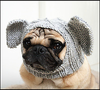 BNPS.co.uk (01202 558833)<br /> Pic: JessicaFurtado/BNPS<br /> <br /> ***Please use full byline***<br /> <br /> Elephant hat<br /> <br /> Barking mad entrepreneur Jessica Lynne has set tails wagging after launching her own fashion line for pug dogs. The 22-year-old's hand knitted hats and costumes transform the cute canines into characters such as a ladybird, an alien, an aviator, Batman and even Minnie Mouse. Dog-mad Jessica was inspired to launch her canine couture after knitting her adopted pug a wacky hat to keep him warm through cold winters. The Snuggly Pug Alien hat was such a hit with fellow pug owners she founded her company All You Need is Pug while still studying for a university degree in English. Her crazy creations have also had the thumbs up from the dinky dogs themselves, who are happy to parade them with pride.