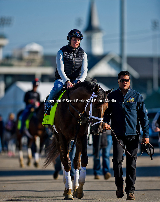 April 28, 2015: Carpe Diem, trained by Todd Pletcher, exercises in preparation for the 141st Kentucky Derby at Churchill Downs in Louisville, Kentucky. Scott Serio/CSM