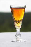 Swedish traditional aquavit schnapps glass in pointed form filled to the brim with spiced vodka, brannvin. Sweden, Europe.