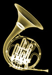 X-ray image of a French horn (gold on black) by Jim Wehtje, specialist in x-ray art and design images.