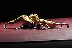 RIEN NE LAISSE PRESAGER DE L ETAT DE L EAU....Choregraphie : DUBOC Odile..Mise en scene : DUBOC Odile..Compositeur : JEKER Thomas..Compagnie : Centre Choregraphique National de Franche Comte..Decor : DUBOC Odile,MICHEL Francoise..Lumiere : MICHEL Francoise..Costumes : PETITPIERRE Corine..Avec :..CHRISTOPH Edith..DANJOUX Bruno..DRUGUET Vincent..GANACHAUD Stefany..KIM Jung Ae..LAYES Clement..MINOT Blandine..RICHARD Alban..ROGNERUD Francoise..Lieu : Theatre de la Ville..Ville : Paris..Le : 05 12 2005..© Laurent PAILLIER / photosdedanse.com..All rights reserved