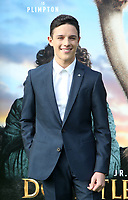 11 January 2020 - Westwood, California - Harry Collett. the premiere of Universal Pictures' Dolittle held at the Regency Village Theatre. Photo Credit: FS/AdMedia