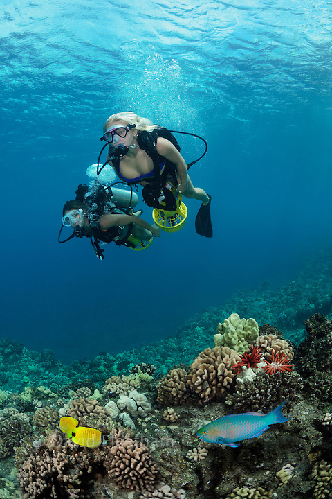 Two female divers (MR) on underwater scooters cruise over a reef off Maui, Hawaii.
