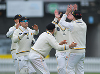 Wellington's Michael Bracewell celebrates the run out of Otago's Hamish Rutherford on day one of the Plunket Shield cricket match between the Wellington Firebirds and Otago Volts at Basin Reserve in Wellington, New Zealand on Monday, 21 October 2019. Photo: Dave Lintott / lintottphoto.co.nz