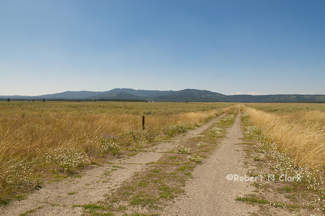 The walking road in to Railroad Ranch, Harriman State Park