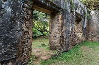 A hiker's view of the Kaniakapupu Ruins (or King Kamehameha III's Summer Palace), Nu'uanu Valley, O'ahu.