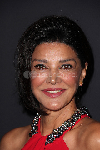 LOS ANGELES, CA - SEPTEMBER 30: Shohreh Aghdashloo at the LA Philharmonic Opening Night Gala at the Disney Concert Hall in  Los Angeles, CA. Credit: David Edwards/DailyCeleb/MediaPunch
