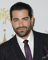 09 February 2019 - Pasadena, California - Jesse Metcalfe. 2019 Winter TCA Tour - Hallmark Channel And Hallmark Movies And Mysteries held at  Tournament House. Photo Credit: PMA/AdMedia