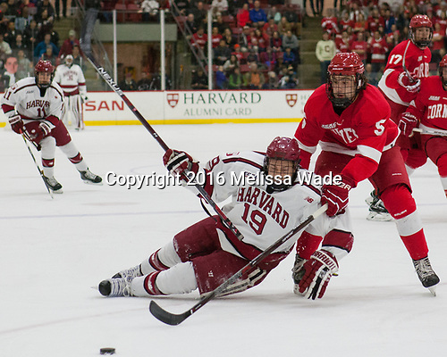 Jake Horton (Harvard - 19), Matt Nuttle (Cornell - 5) - The Harvard University Crimson defeated the visiting Cornell University Big Red on Saturday, November 5, 2016, at the Bright-Landry Hockey Center in Boston, Massachusetts.
