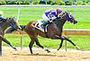 Chocolateicecream winning at Delaware Park on 6/29/17
