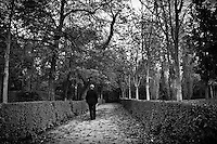 With the fallen leaves telling that we are in fall, this solitary man is strolling around the retiro park in Madrid, Spain