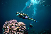 Couple scuba dive on vacation Caribbean..MR