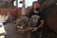 Monte Mor (SP), 27/04/2020 - Animais-SP - A Guarda Municipal de Monte Mor, interior de Sao Paulo, resgatou cerca de 40 animais em situacao de maus tratos na manha desta segunda-feira (27). Os caes viviam na casa de uma acumuladora, localizada no Jardim Colina, e ficavam expostos ao sol e a chuva. Muitos estavam doentes. Foram resgatados caes, gatos e passaros. A acao aconteceu apos a GM receber uma denuncia de uma ONG, que abriga animais resgatados na cidade.. Foto: Luciano Claudino/Codigo 19 (Foto: Luciano Claudino/Codigo 19/Codigo 19)