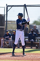 San Diego Padres outfielder Buddy Reed (56) at bat during an Instructional League game against the Milwaukee Brewers on September 27, 2017 at Peoria Sports Complex in Peoria, Arizona. (Zachary Lucy/Four Seam Images)