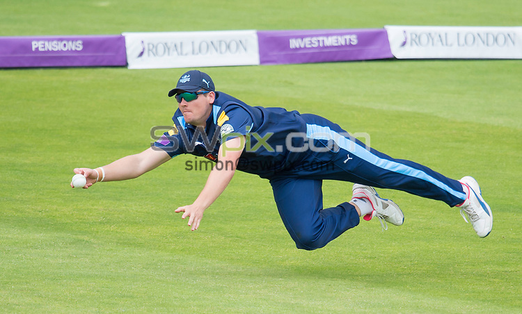 Picture by Allan McKenzie/SWpix.com - 13/06/2017 - Cricket - Royal London One-Day Cup - Yorkshire County Cricket Club v Surrey County Cricket Club - Headingley Cricket Ground, Leeds, England - Yorkshire's Alex Lees makes an attempt at a diving catch.