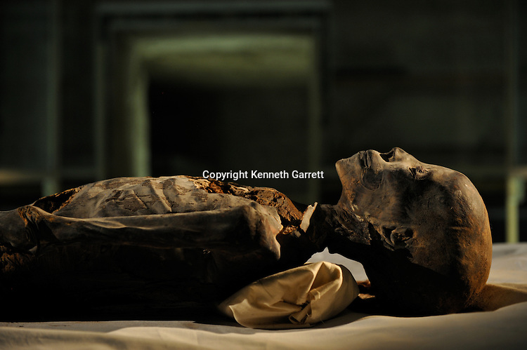mm7864; 18th Dynasty; New Kingdom; Egypt; KV21; DNA; Sample; Mummy, unknown mummy