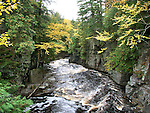 The Beautiful Sturgeon River Gorge As The Golden Colored Water Rushes Between It's Vertical Walls In Autumn, Upper Peninsula, Michigan, USA : Low Res File - 8X10 To 11X14 Or Smaller, Larger If Viewed From A Distance