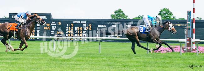 Shalako winning at Delaware Park on 6/4/16