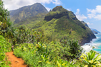 A state park ranger pauses to look out to sea along the Kalalau Trail near Hanakapi'ai Beach, northern Kaua'i.