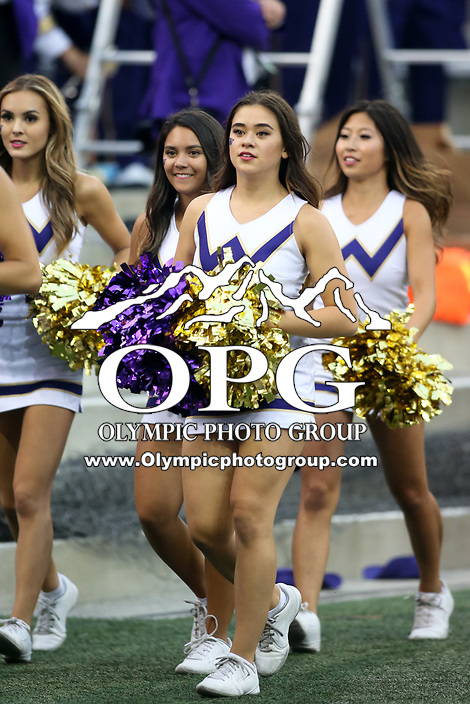 SEATTLE, WA - SEPTEMBER 16:  Washington cheerleader Lauren Cather entertained fans during the football game between the Washington Huskies and the Fresno State Bulldogs on September 16, 2017 at Husky Stadium in Seattle, WA. Washington won 63-7 over Montana.