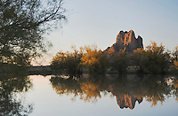 Rocks reflecting in pond with Salt Cedars at sunrise,Shiprock, Navajo Indian Reserve, New Mexico, USA, September 2006