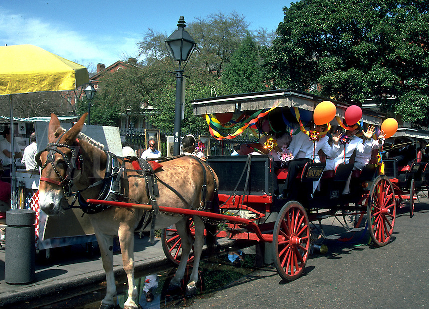 A cheerfully decorated horse-drawn carriage in the French Quarter. New Orleans, Louisiana.
