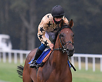 Twice As Likely ridden by George Wood goes down to the start Winner of The Fovant Fillies' Handicap during Horse Racing at Salisbury Racecourse on 13th August 2020