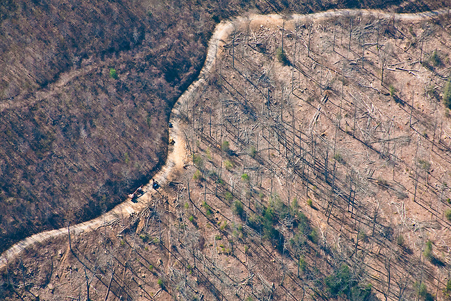 Logging operation in Western North Carolina, Flight by SouthWings