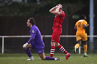 Frustration for Hornchurch after they concede an equaliser during Hornchurch vs Merstham, BetVictor League Premier Division Football at Hornchurch Stadium on 15th February 2020