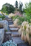Drought tolerant hillside garden