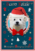 Isabella, CHRISTMAS ANIMALS, WEIHNACHTEN TIERE, NAVIDAD ANIMALES, paintings+++++,ITKE543031-ALE,#xa#