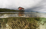 Split level of coral reef in the shallows with house on stilts. North Raja Ampat, West Papua, Indonesia
