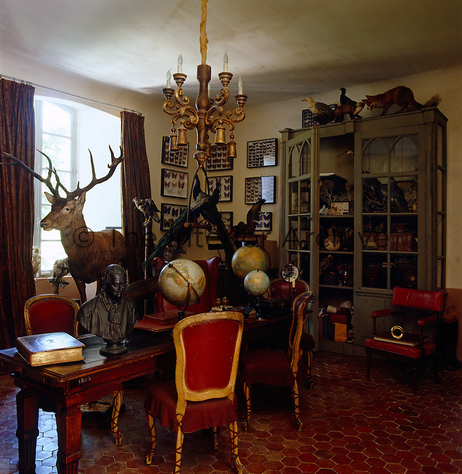 An eclectic collection of stuffed animals and birds, globes and books is displayed on a table and in a large cabinet of curiosities