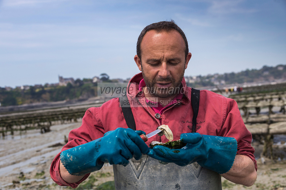 France, Ille-et-Vilaine (35), Cancale,Franck Vallerie ostréiculteur: Les Huîtres de Céline//France, Ille et Vilaine, Cancale, Oyster farmer: Franck Vallerie, Oyster farm: Les Huîtres de Céline: Cancale oysters, local oysters [Non destiné à un usage publicitaire - Not intended for an advertising use]